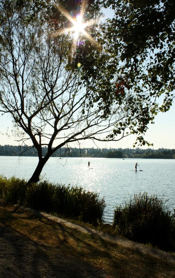Green Lake Friends by Alex Mendez. Seattle, Washington.